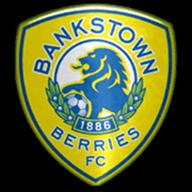 Canterbury Bankstown FC