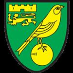 Norwich City Academy